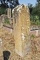 Spomenici na seoskom groblju u Nevadama (75).jpg