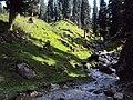 Srinagar - Pahalgam views 72.JPG