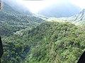 Starr-151005-0077-Aleurites moluccana-aerial view-West Maui-Maui (25679955203).jpg