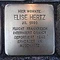 Stolperstein Gangelt Sittarder Straße 12 Elise Hertz.jpg