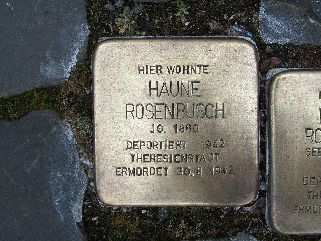 Stolperstein Haune Rosenbusch, 1, Marktstraße 6, Borken, Schwalm-Eder-Kreis.jpg