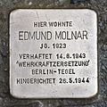 Stolperstein für Edmund Molnar.JPG
