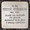 Stolperstein für Teodor Rosenberg.jpg