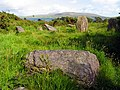 Stone Circle near Ahakista - geograph.org.uk - 15462.jpg