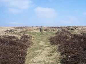 Barbrook One - Image: Stone circle and cairn geograph.org.uk 1214808