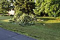 Storm Damage Montgomery County Maryland June 29 2012 (7473948854).jpg