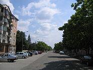 Strada in Jimbolia