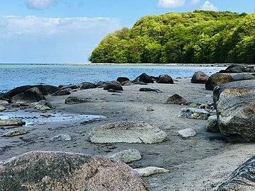 Strand im Naturschutzgebiet Granitz.jpg