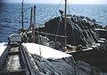 Sule Skerry landing 383284 53fec1f1.jpg