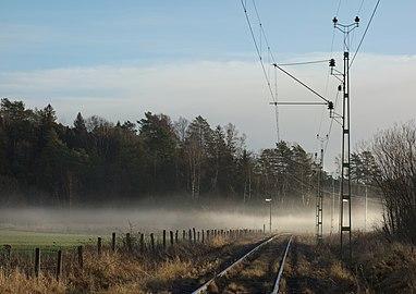 Sunlit fog across railway tracks.jpg