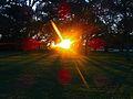 Sunset Viewed From Warner Park - panoramio.jpg