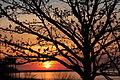 Sunset by Lake Erie.JPG