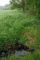 Svinnegarns källa - kmb.16001000019496.jpg