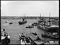 Sydney ferries FAIRLIGHT COMMODORE orient liner AUSTRAL at Circular Quay 1884-1908.jpg