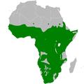 Sylvietta distribution map.png