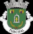 TVD-turcifal.png