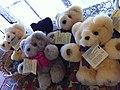 Tambo Teddys.jpg