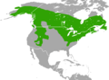 Tamiasciurus hudsonicus range map.png