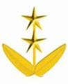 Teniente Coronel (Venezuela).png