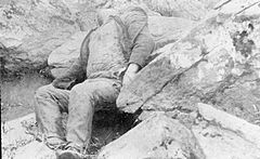 The American Civil War, 1861 - 1865; corpse on the field of Gettysburg Q44184.jpg