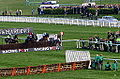 The Arkle Challenge Trophy Steeple Chase (13178180945).jpg