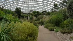 File:The Great Glasshouse at National Botanic Garden of Wales.ogv
