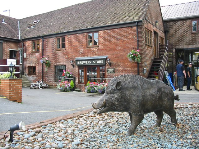 The Hampshire Hog Ringwood Brewery Ringwood Hampshire - geograph.org.uk - 213781