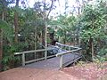The Main Entrance to the Sea Acres Rainforest Centre on Wednesday, 6th August 2008 at 9-59am. - panoramio.jpg