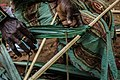 The Making of Thatch, Nigeria Photo 5.jpg
