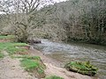 The River Torridge flows past Gowman's Cleave Wood - geograph.org.uk - 1196542.jpg