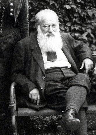 Theodor Billroth - Image: Theodor Billroth crop