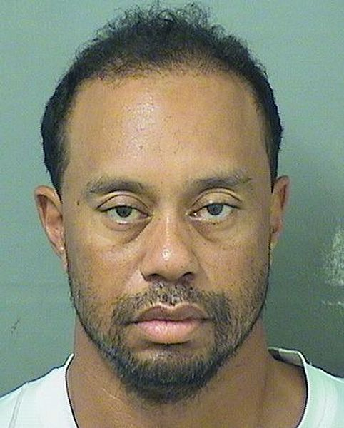 File:Tiger Woods, arrest photo, May 2017.jpg