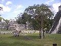 Tikal - square - Guatemala.jpg