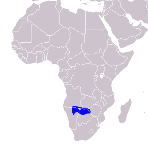Bradfield's hornbill - Image: Tockus bradfieldi Distribution