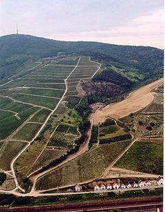 Tokaj - Hegyalja-06.jpg