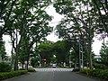 Tokyo Route 187 -01.jpg