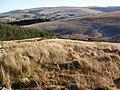 Top of Cwm Newynydd - geograph.org.uk - 1072253.jpg