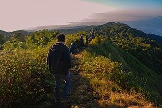 Doi Pha Hom Pok National Park - The summit of Doi Pha Hom Pok