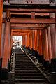 Torii in Fushimi Inari Shrime (11315842023).jpg