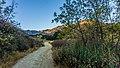 Towsley Canyon 5.1 Mile Loop (15383174109).jpg