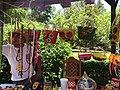 Tradiciones en el Dolores Olmedo 08.JPG