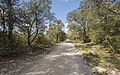 Trail in Domaine de Restinclières, Prades-le-Lez.jpg