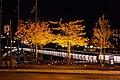 Trondheim (8273936299).jpg