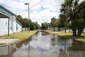Tropical Storm Barry (2007) - Minor street flooding from Barry in Florida