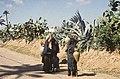 Tunis1960-108 hg.jpg