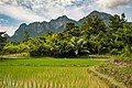 USAID Measuring Impact Conservation Enterprise Retrospective (Philippines; Nagkakaisang Tribu ng Palawan) (26420931018).jpg