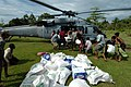 US Navy 050113-N-9885M-088 Victims of the Dec. 26 tsunami rush an MH-60S Knighthawk helicopter as crew members assigned to the Gunbearers of Helicopter Combat Support Squadron Eleven (HC-11) offload relief supplies.jpg
