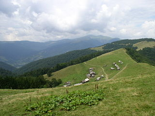 Polonyna (montane meadow)