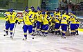 Ukraine Ice hockey Team 2010.JPG