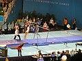 Uneven Bars Commonwealth Games.jpg